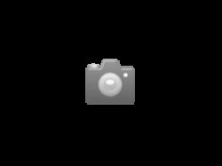 IC Music SSM2030-TellLab-Resistor for Prophet6